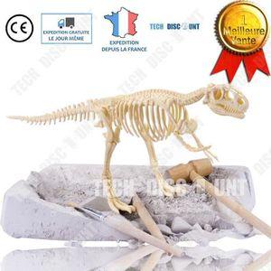 ASSEMBLAGE CONSTRUCTION TD Tyrannosaurus jouet dinosaure enfant jurassic w
