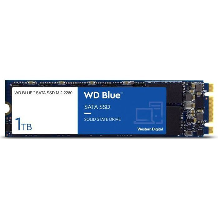 WD Blue™ - Disque SSD Interne - 3D Nand - 1To - M.2 SATA (WDS100T2B0B)