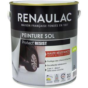 PEINTURE - VERNIS RENAULAC Peinture Sol Gris Argent - Satin - 2,5L -