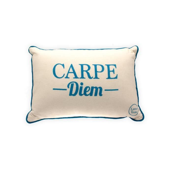 petit coussin rectangulaire carpe diem achat vente coussin cdiscount. Black Bedroom Furniture Sets. Home Design Ideas