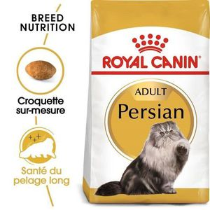 CROQUETTES Royal Canin Persan Adult pour chat 10 kg
