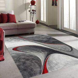 TAPIS Tapis MADILA rouge Tapis Moderne 60 x 110 cm