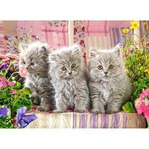 PUZZLE Puzzle 300 pièces : trois petits chatons gris aill
