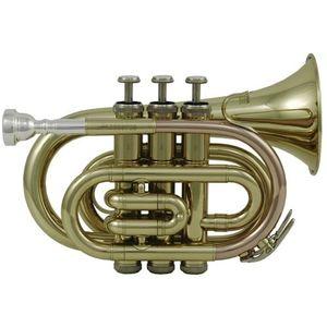 TROMPETTE Trompette d'Études Sib PT-101