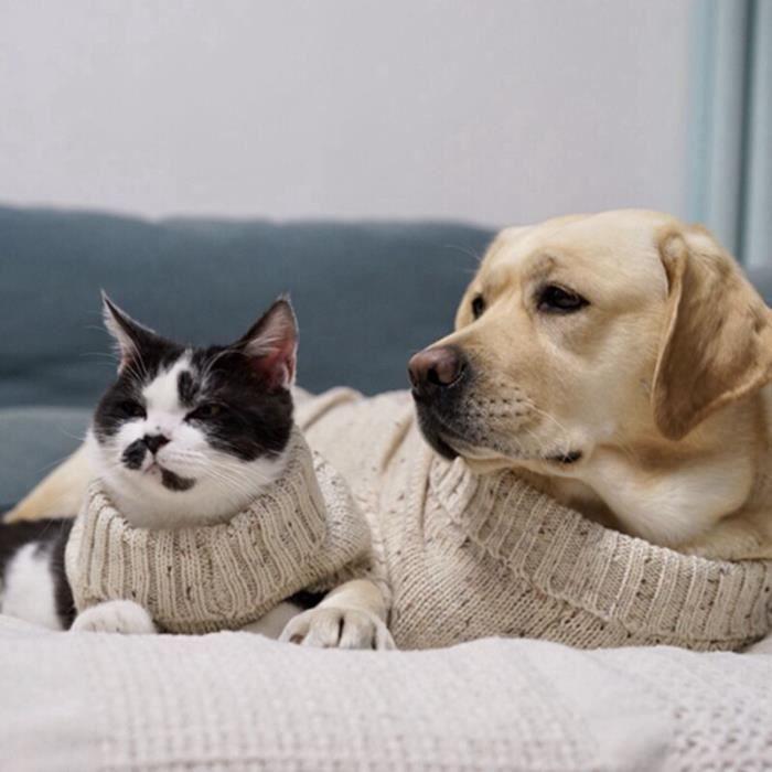 Pull Gilet,Chandail chauffant tricoté à la main blanc Animal de compagnie, chat chien, tricot à la main, chandails - Type WHITE-L #B