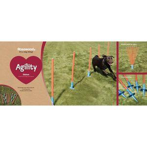 ENTRAINEMENT - AGILITY ROSEWOOD Piquets slalom d'agilité - Pour chien