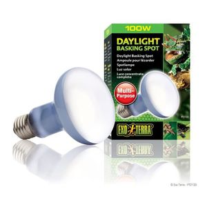 ÉCLAIRAGE DAYLIGHT BASKING SPOT ampoule 100 W