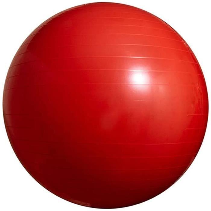 Ballon d'exercice 65 cm Chaise À Billes Antidérapante À Stabilité Extra Épaisse Ballon De Gym Anti-Éclatement avec Pompe Rapide 2038