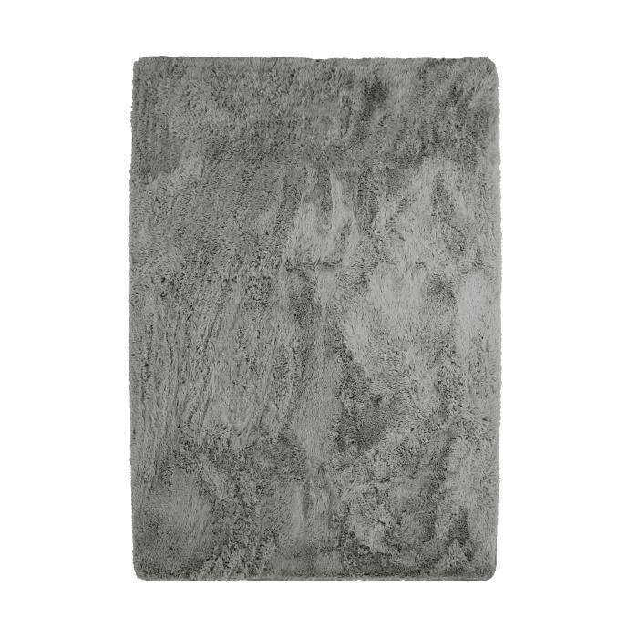NEO YOGA Tapis de salon ou chambre - Microfibre extra doux - 225 x 340 cm - Gris clair