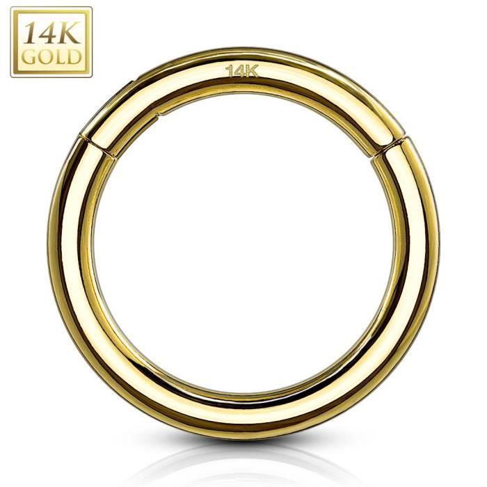 Piercing anneau segment clipsable acier chirurgical