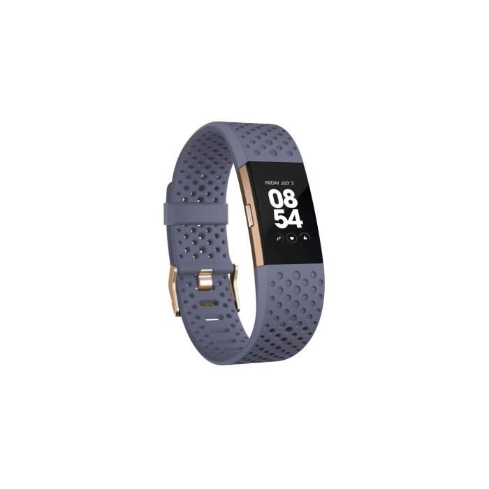 Fitbit - Charge 2 - Edition Spéciale - Or Rose & Bleu Gris - S