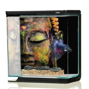 AQUARIUM Aquarium Betta Kit Bouddha 3 Litres Marina