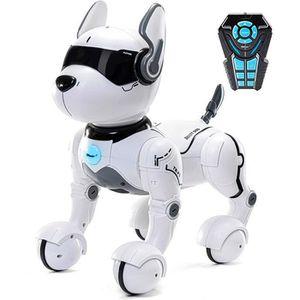 ROBOT - ANIMÉ ANIMÉ Chiens, techniciens, robots pour enfants, jouets