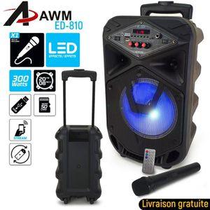 ENCEINTE ET RETOUR Enceinte à leds AWM ED-810 sur batterie BT/FM/AUX/
