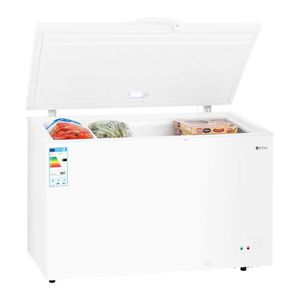 RÉFRIGÉRATEUR CLASSIQUE Congélateur Coffre Réfrigérateur Bahut Freezer Cla