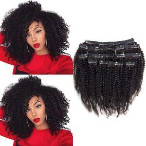 PERRUQUE - POSTICHE Riya 4B 4C Remy Afro crépus de cheveux bouclés Cl