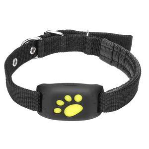 TRACAGE GPS Z8 - Tracage GPS Un chien de traqueur d'animal de