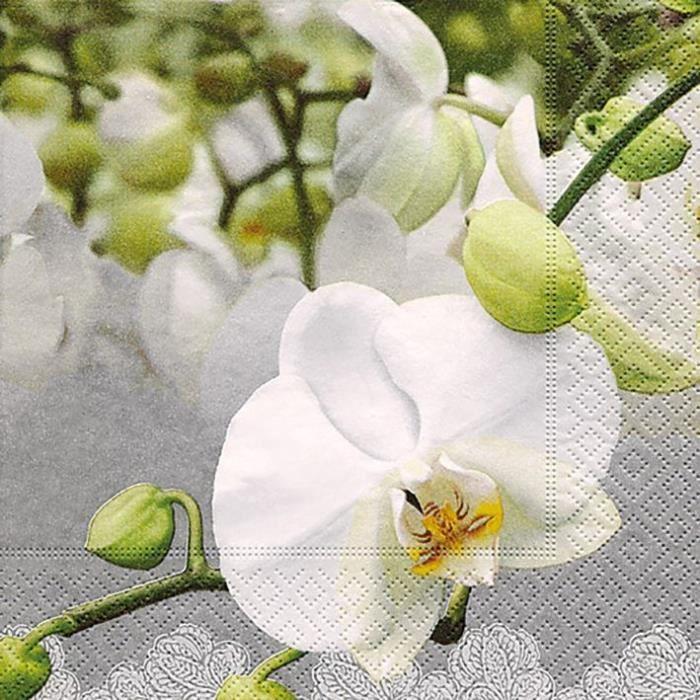 PAPER DESIGN - 20 Serviettes 33x33 cm - Orchid festival