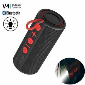 ENCEINTE NOMADE 12W Enceinte TWS Bluetooth+LED Lampe Torche,Sans F