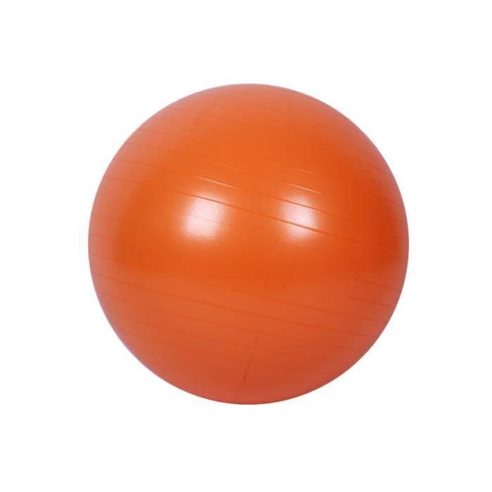 Balle de yoga pour exercices de stabilité d'équilibre Workout Fitness Anti Burst 55cm TAPIS DE SOL - TAPIS DE GYM - TAPIS DE YOGA