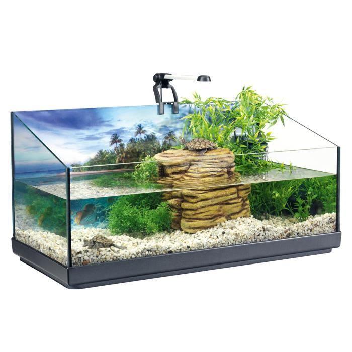 TETRA Repto AquaSet - Aquarium Terrarium Complet pour Reptiles et Amphibiens