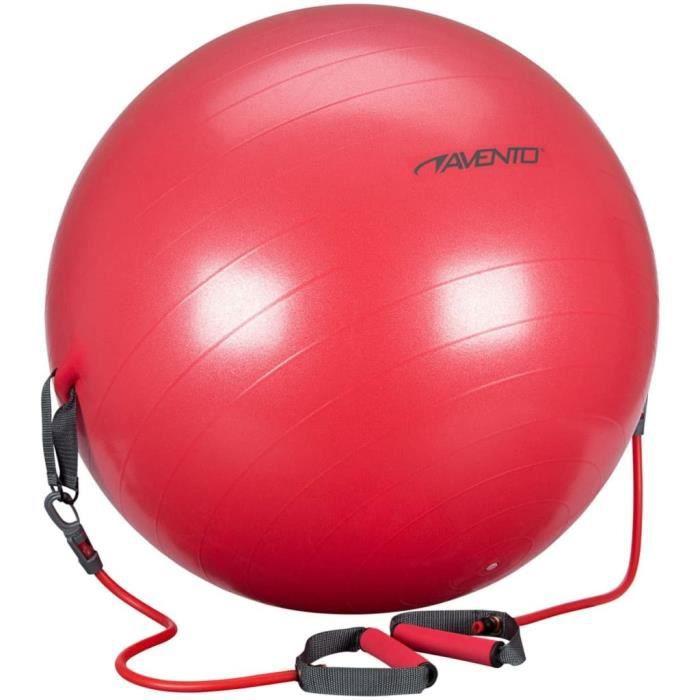 Avento Ballon de fitness et tubes de résistance 65cm Rouge 41TO-ROG-65
