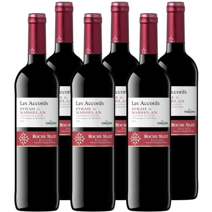 Les Accords de Roche Mazet - Syrah Marselan - IGP Pays d'Oc - Vin Rouge - Millésime 2019 - Terra Vitis - Lot de 6 bouteilles x 75 cl