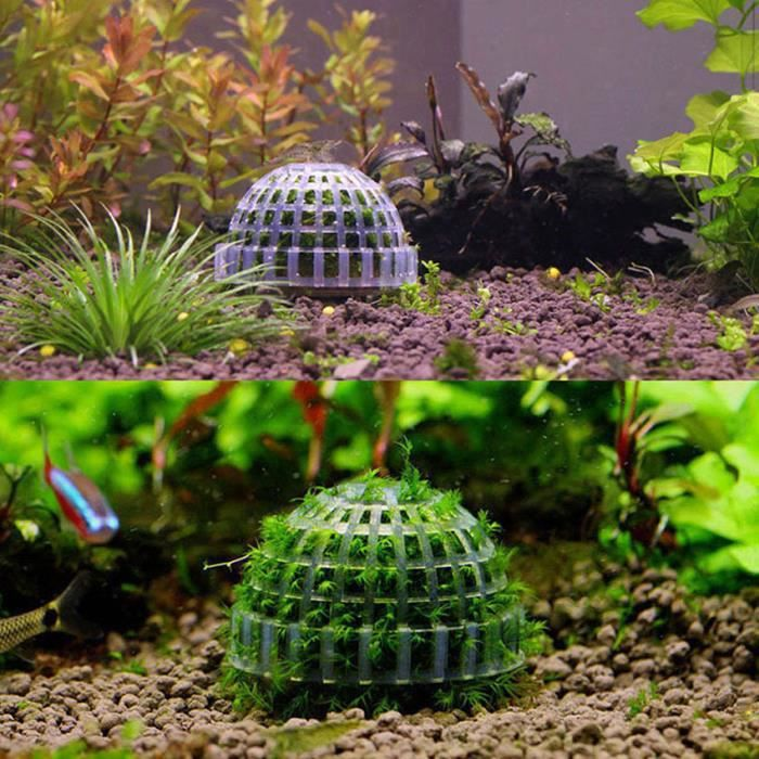 Mousse vegetale naturelle achat vente mousse vegetale for Aquarium en boule