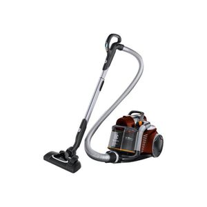 ASPIRATEUR TRAINEAU Electrolux UltraFlex EUF8ANIMAL Aspirateur trainea