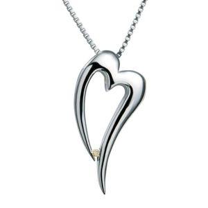 Boucle d'oreille Hot Diamonds Pendentif diamant Collier en argent s