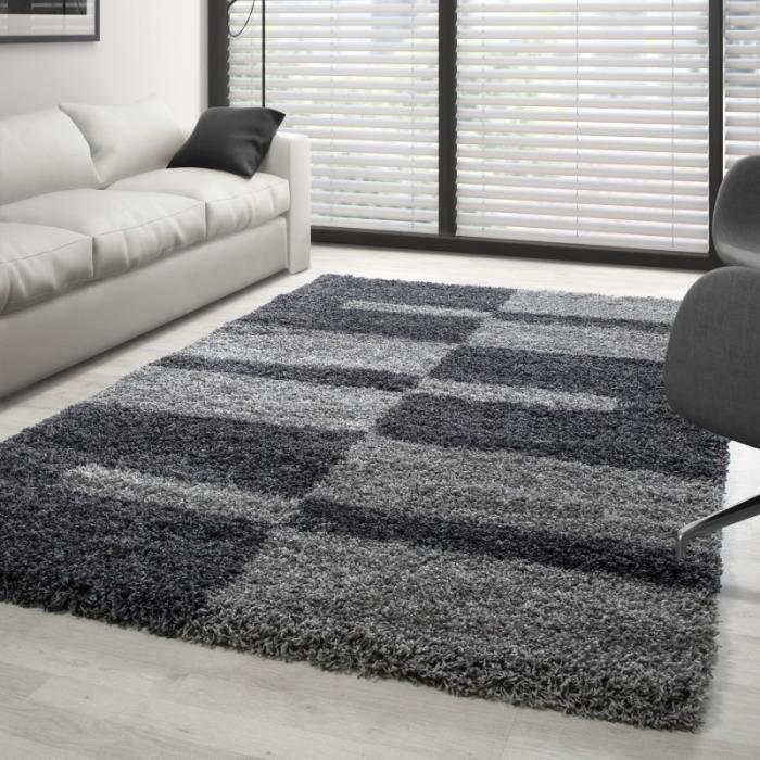 Tapis Gala Shaggy designe pile longue Gris-Gris Clair (160x230 cm)