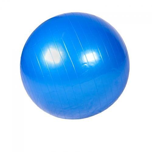 Swiss ball - Ballon de gym 55cm bleu