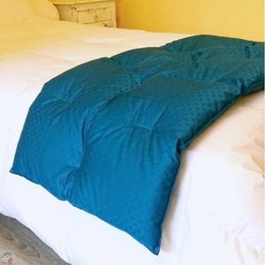 JETÉE DE LIT - BOUTIS Chemin de lit matelassé bleu 60x200 cm 90% duvet n