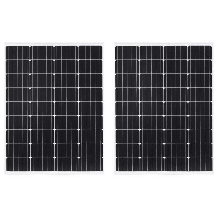 Panneaux solaires 2 pcs 100 W Monocristallin Verre de sécurité