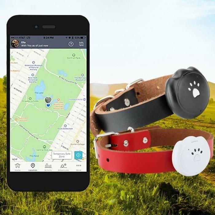 Letouch Mini GPS Traqueur WIFI Chien Collier -Étanche Localisateur - Temps Réél Suivi-Pistage D'animale(Blanc)