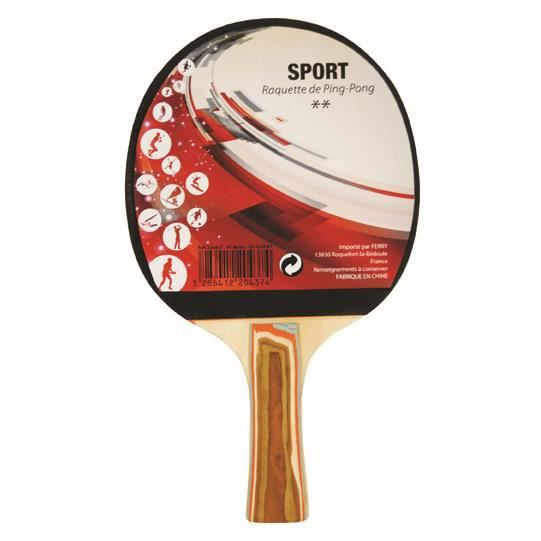 Raquette Ping Pong 2 étoiles
