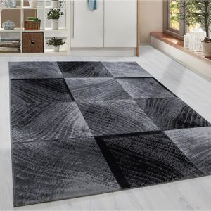 TAPIS Moderne Shaggy tapis vérifié arbre écorce salon gr