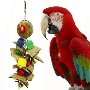 Oiseau Pet Colore Coquille Parrot Swing Coco Bite Jouet Pour Perruche Cockatiel F3086 Achat Vente Jouet Oiseau Pet Colore Coquille Cdiscount
