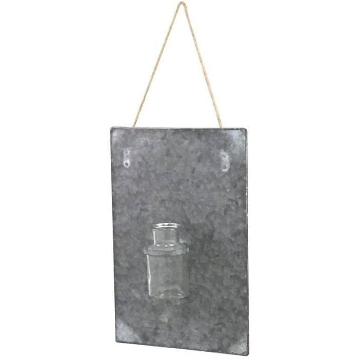 VASE - SOLIFLORE Plaque en Zinc avec Soliflore Vase Murale