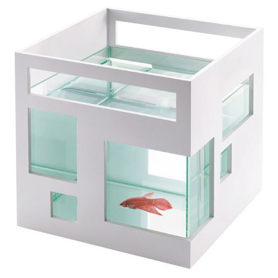 aquarium d co design umbra achat vente aquarium. Black Bedroom Furniture Sets. Home Design Ideas