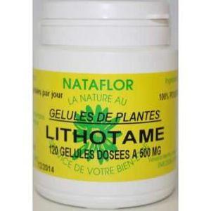 DÉFENSE IMMUNITAIRE  GELULES LITHOTAME 240 gélules dosées à 500 mg.