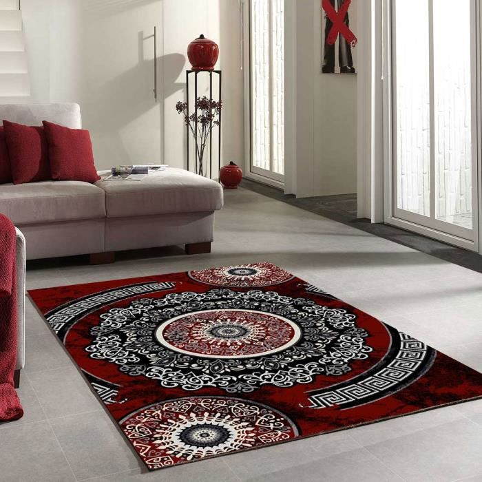 Tapis Salon New Florida 4 Gris Et Rouge 120x170 Tapis