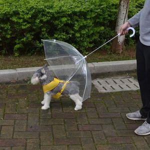 KIT VÊTEMENT Transparent Umbrella Pet Small Dog Umbrella Imperm