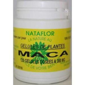TONUS - VITALITÉ GELULES MACA 240 gélules à 300 mg poudre pure.