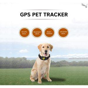TRACAGE GPS GPS Traqueur GPS de Chien Chat Collier Animal  Éta
