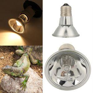 ÉCLAIRAGE Ampoule Intense Basking Spot pour Reptiles et Amph