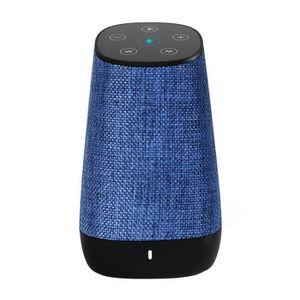 ENCEINTE NOMADE COWIN Enceinte Bluetooth Sans Fil Portable avec Am