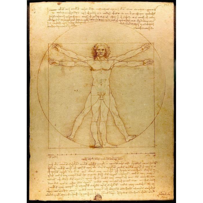 Poster Affiche L'homme Leonard de Vinci Art Celebre Science Dessin 61cm x 83cm