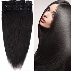 extension cheveux clips avis prices of remy hair. Black Bedroom Furniture Sets. Home Design Ideas