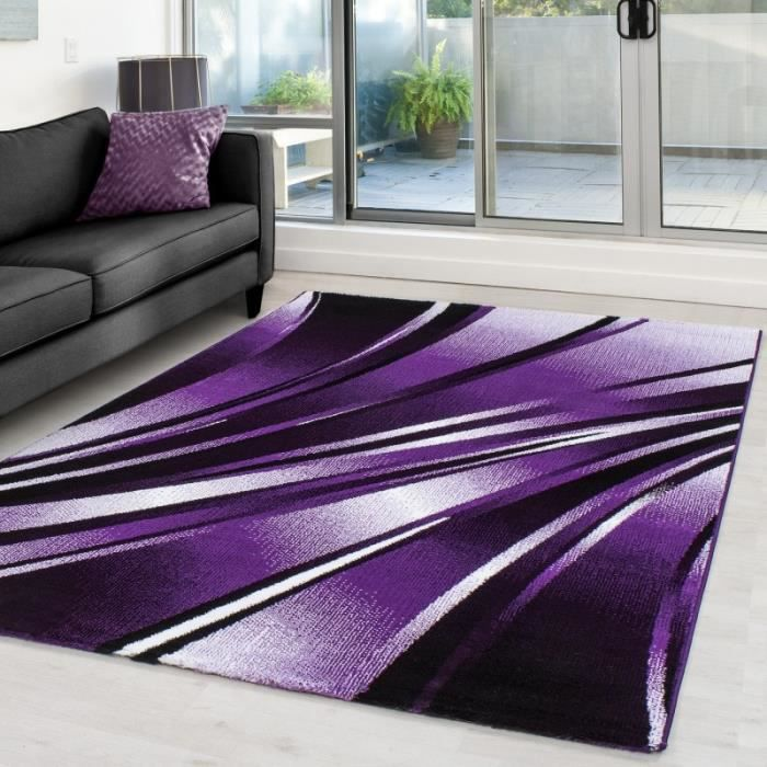 tapis moderne designe parma 9210 violet 120x170 cm achat vente tapis cdiscount. Black Bedroom Furniture Sets. Home Design Ideas
